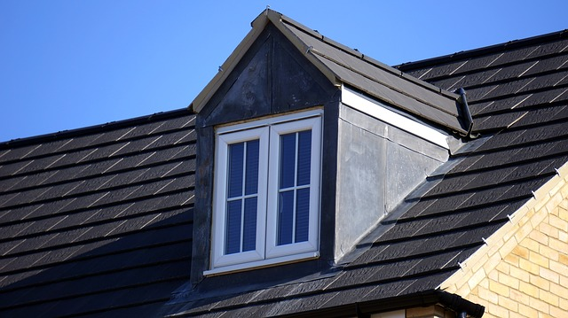 roofing services Tauranga